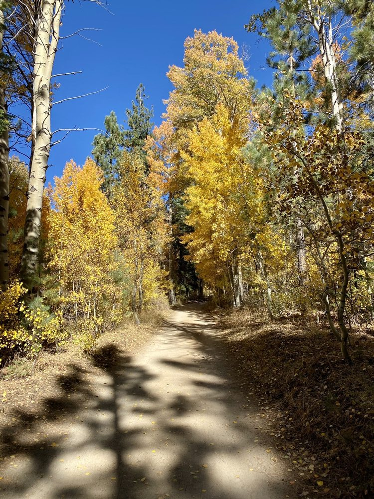 Marlette lake trail: Carson City, NV