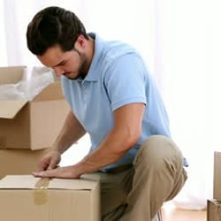 Move Safely and Smoothly: Search for the Best Packers and Movers