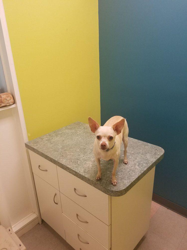 Redland Animal Hospital: 24840 SW 177th Ave, Homestead, FL