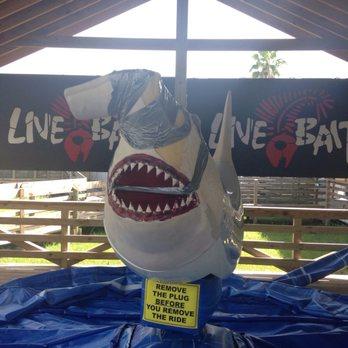 Photo Of Live Bait Orange Beach Al United States