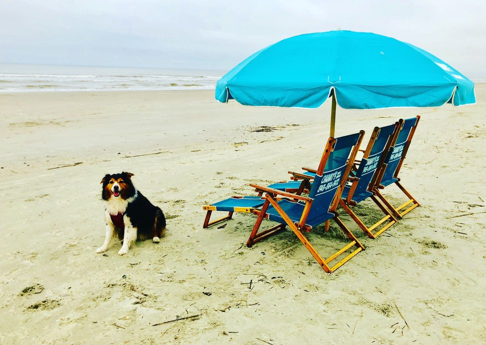 Chunky's Chairs & Umbrellas: Isle of Palms, SC