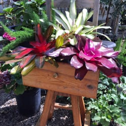 Bountiful Gardens - CLOSED - 37 Photos - Nurseries & Gardening ...