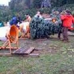 Reade Christmas Tree Ranch - 19 Reviews - Christmas Trees - 7724 ...