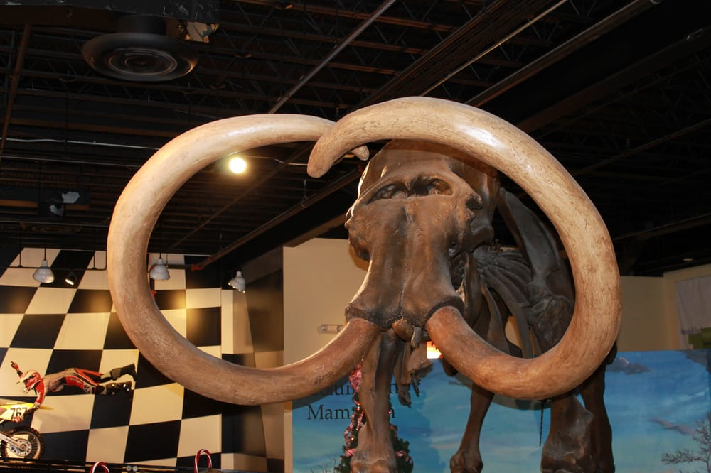 Owensboro Museum of Science & History: 122 E Second St, Owensboro, KY