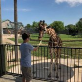 Tanganyika Wildlife Park - 123 Photos & 43 Reviews - Zoos - 1000 S