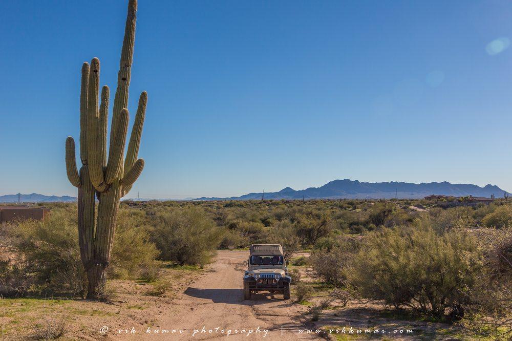 Wayward Wind Desert Tours