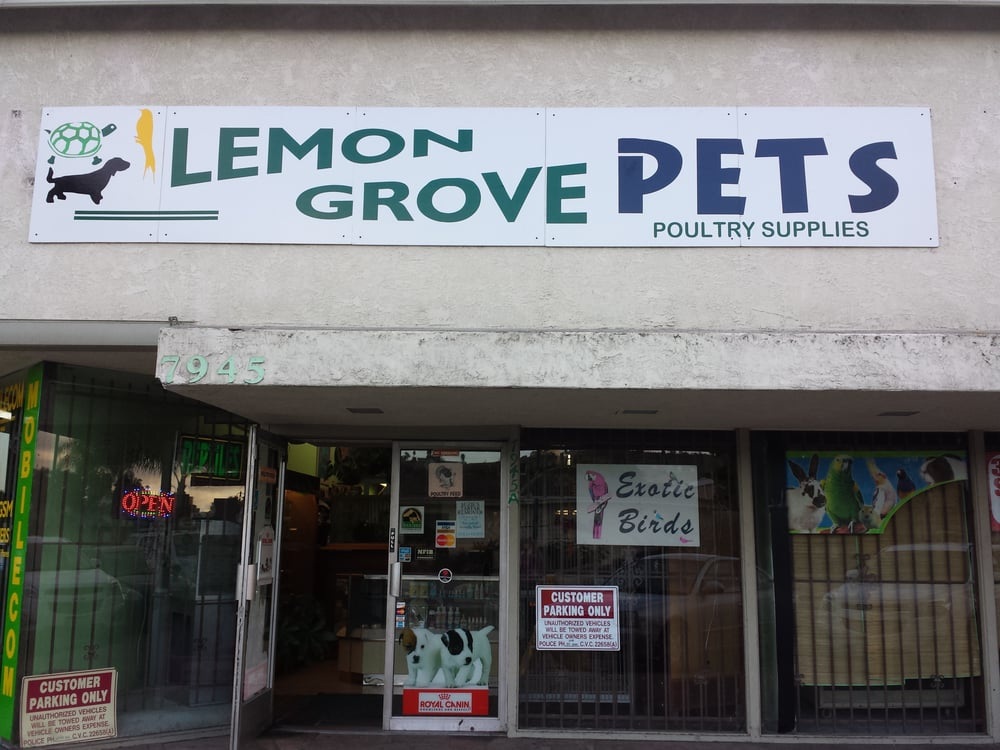 small pet stores near me pets world