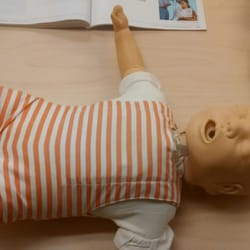american red cross cpr review sheet