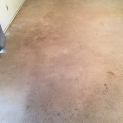 photo of a carpet cleaning and flood damage dallas tx united states