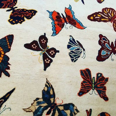 Outrageous Rugs 7126 Miramar Rd San Diego Ca Distribution Services