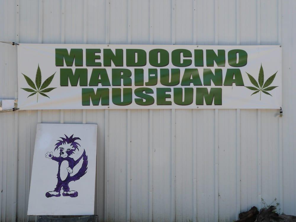 Mendocino Marijuana Museum: 1802 Hwy 128, Philo, CA