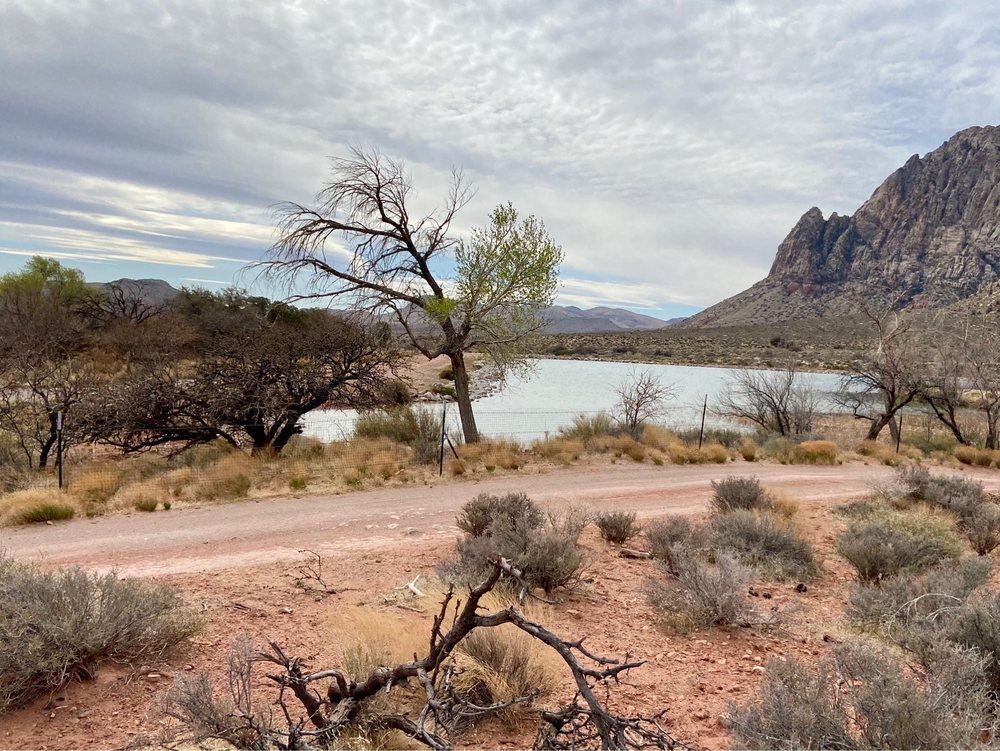Sandstone Canyon Trail: 6375 NV-159, Blue Diamond, NV