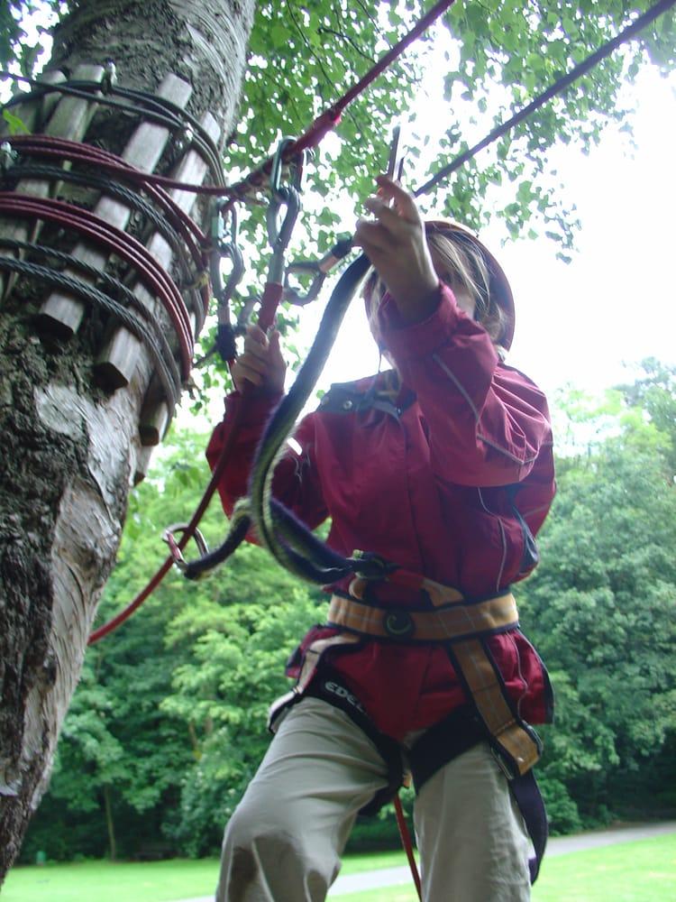 Fotos zu fun forest yelp for Elektriker offenbach