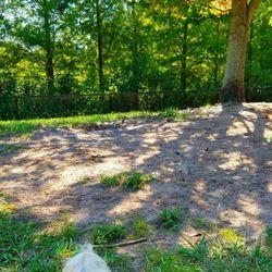 Dog Parks In Lutz Fl