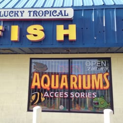 Lucky tropical fish 10 photos local fish stores 4730 for Local fish store