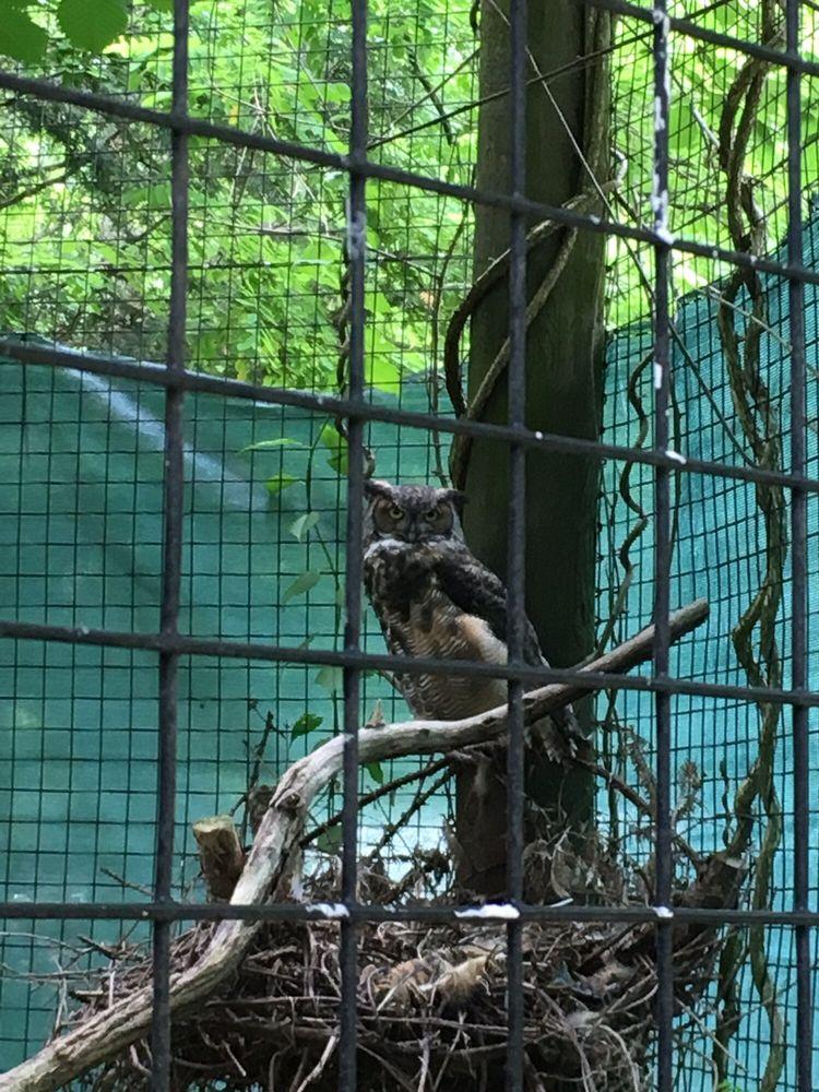 Trevor Zoo: 282 Millbrook School Rd, Millbrook, NY