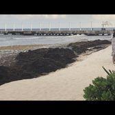 Hilton Playa Del Carmen Resort - 607 Photos & 169 Reviews