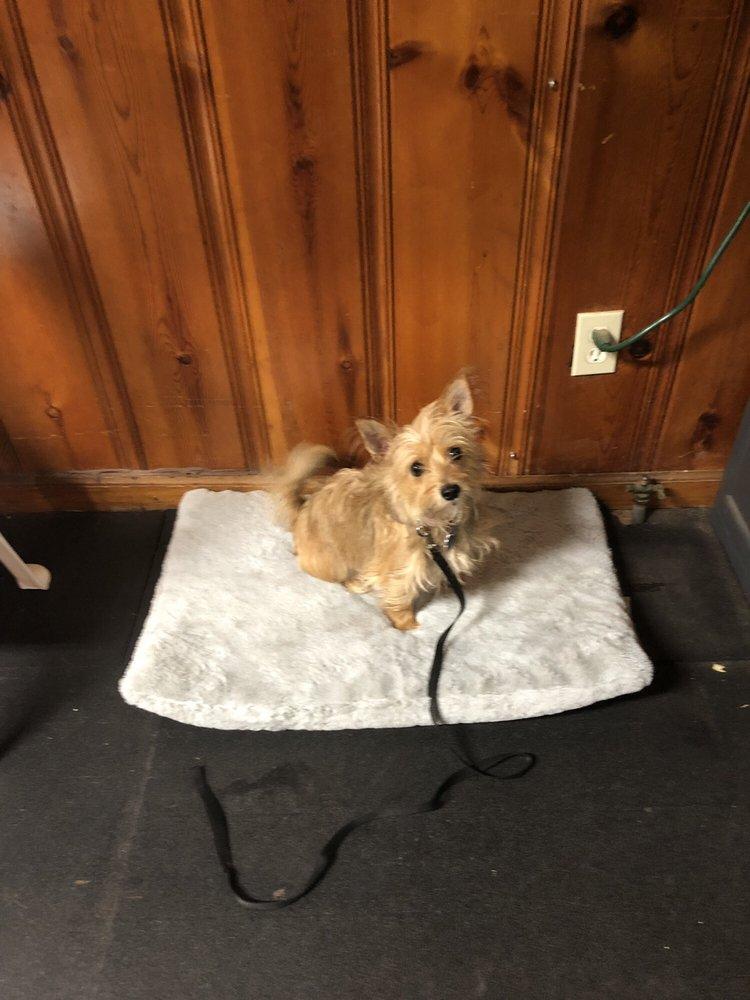 Dog Busters: 110 Auburn Park Dr, Auburn, GA