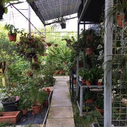 Photo Of Blg Nursery Singapore