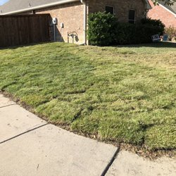 The Grass Outlet - 54 Photos & 56 Reviews - Landscaping - 10624 Fm