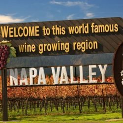 All Day Wine Tours: Napa, CA