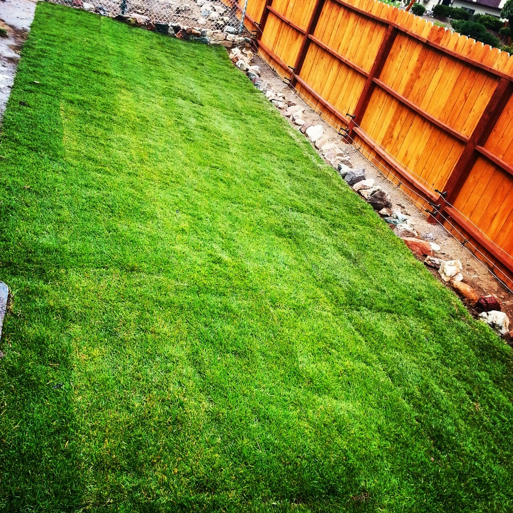 western turf 10 reviews landscaping 465 tacchino st reno