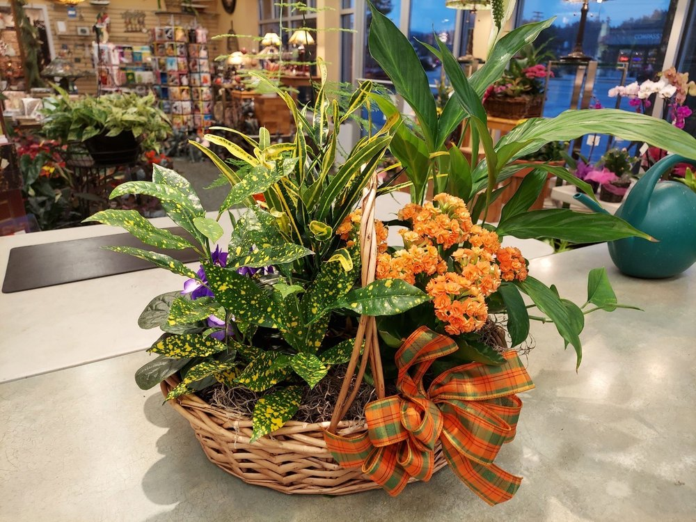 Sheely's Floral & Gifts: 1420 Commercial Ave, Anacortes, WA