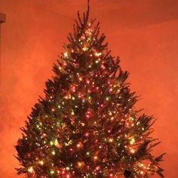 Photo of Mr Jingle's Christmas Trees - West Palm Beach - West Palm Beach, ...