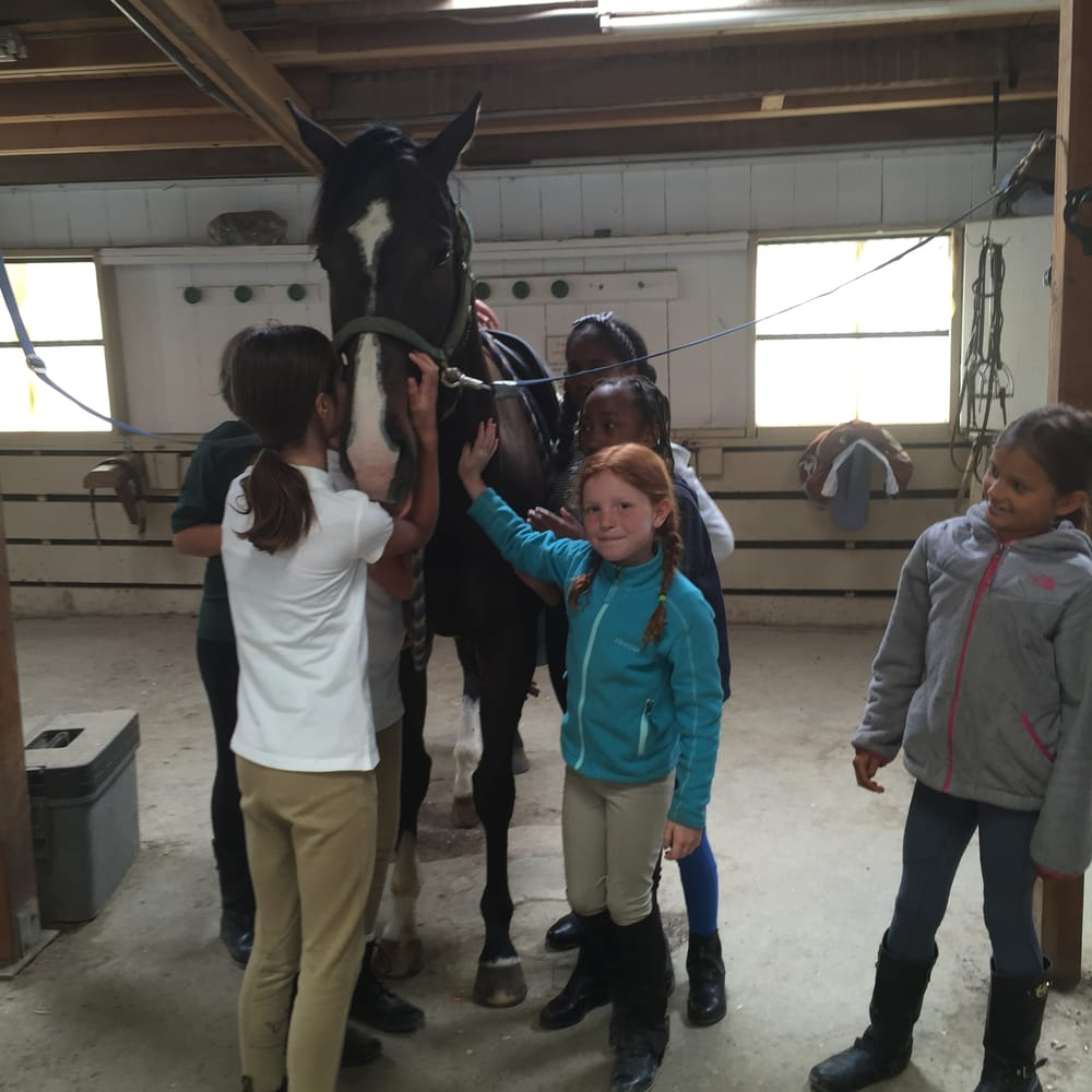 Skyline Ranch Equestrian Center 19 Reviews Horseback