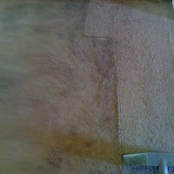 photo of all american carpet cleaning san diego ca united states
