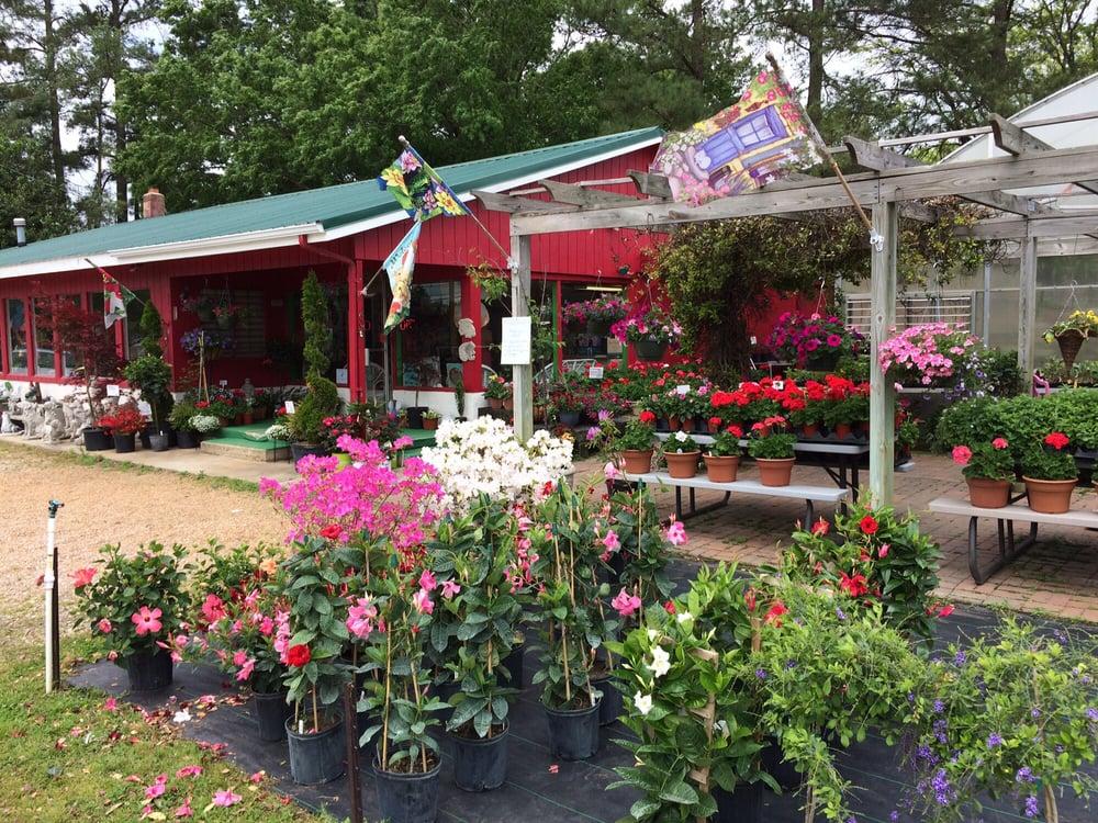 Wayside Nursery: 1350 W Danville St, South Hill, VA
