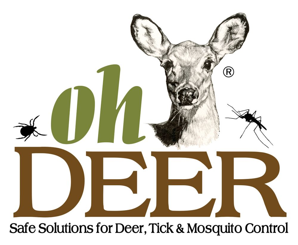 O Deer Oh Deer Nantucket - Pest Control - 4 Reacher Ln, Nantucket, MA ...