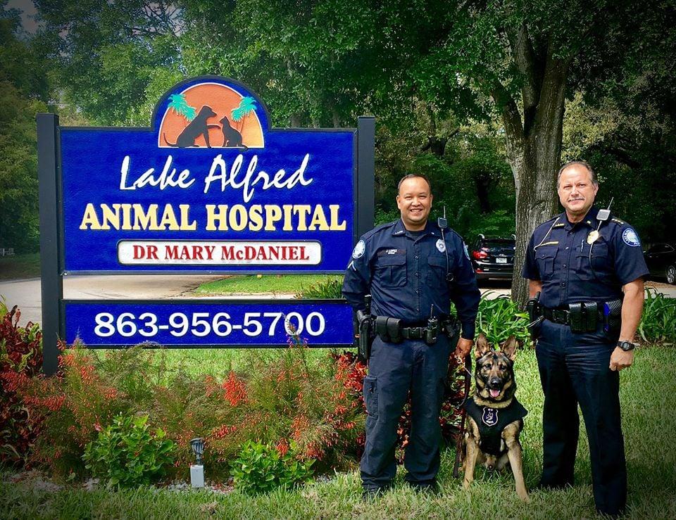 Lake Alfred Animal Hospital: 105 E Alfred St, Lake Alfred, FL