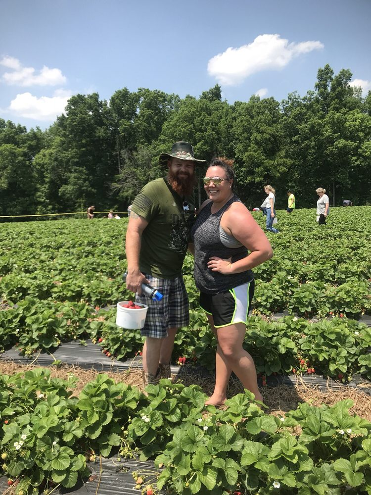 Ingram's Strawberries: 6131 Riverdale Dr, High Point, NC