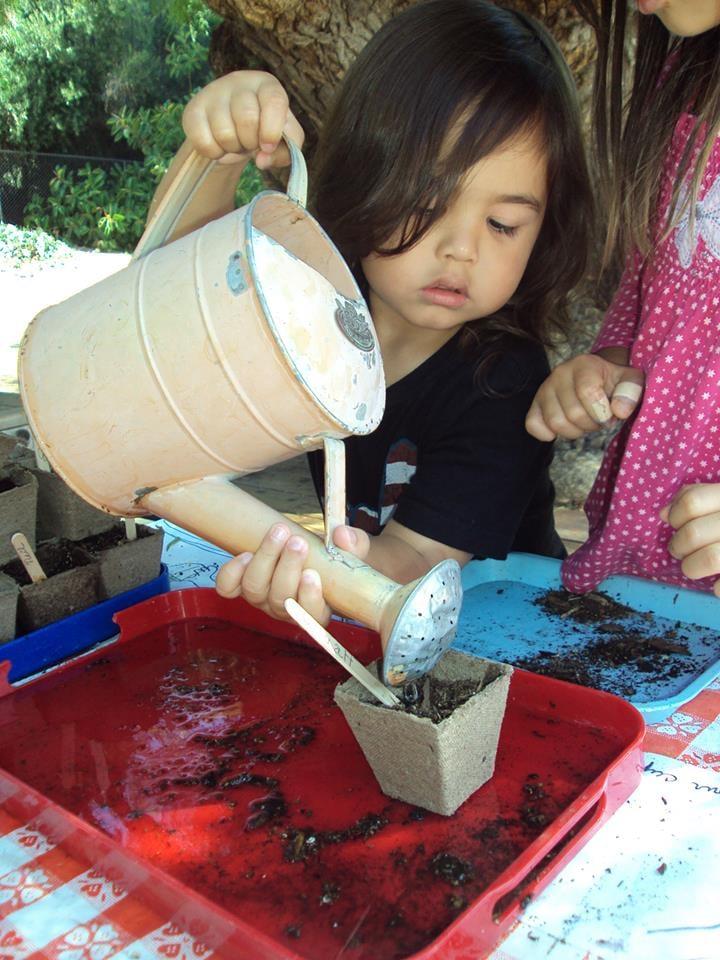 montessori child development center 20 foto e 11. Black Bedroom Furniture Sets. Home Design Ideas