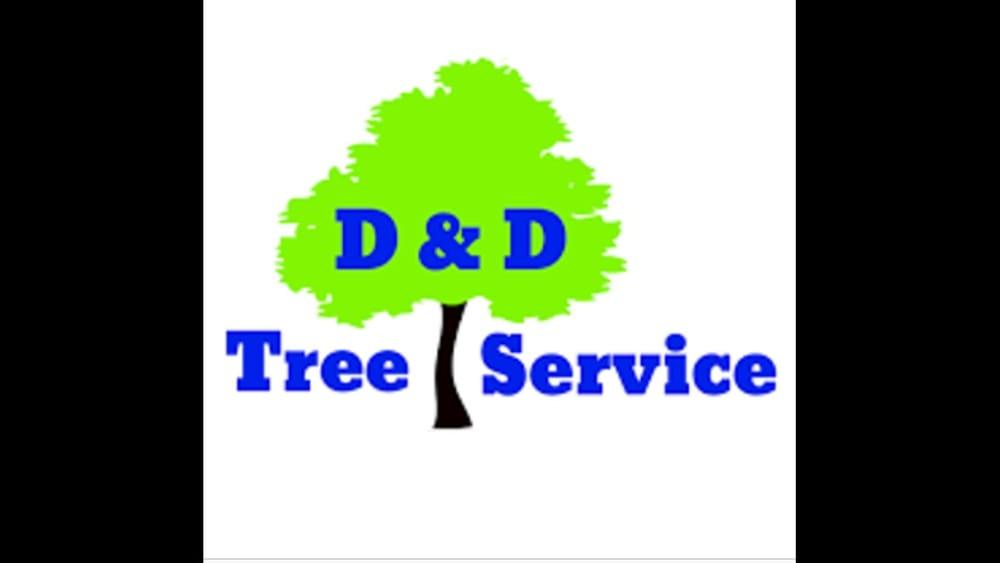D&D Tree Service: Altoona, FL