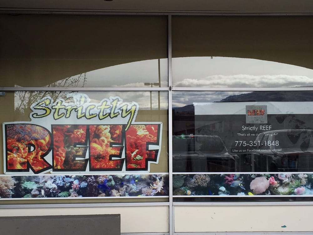 Strictly reef 24 photos 13 reviews aquariums 907 w for Fish store reno