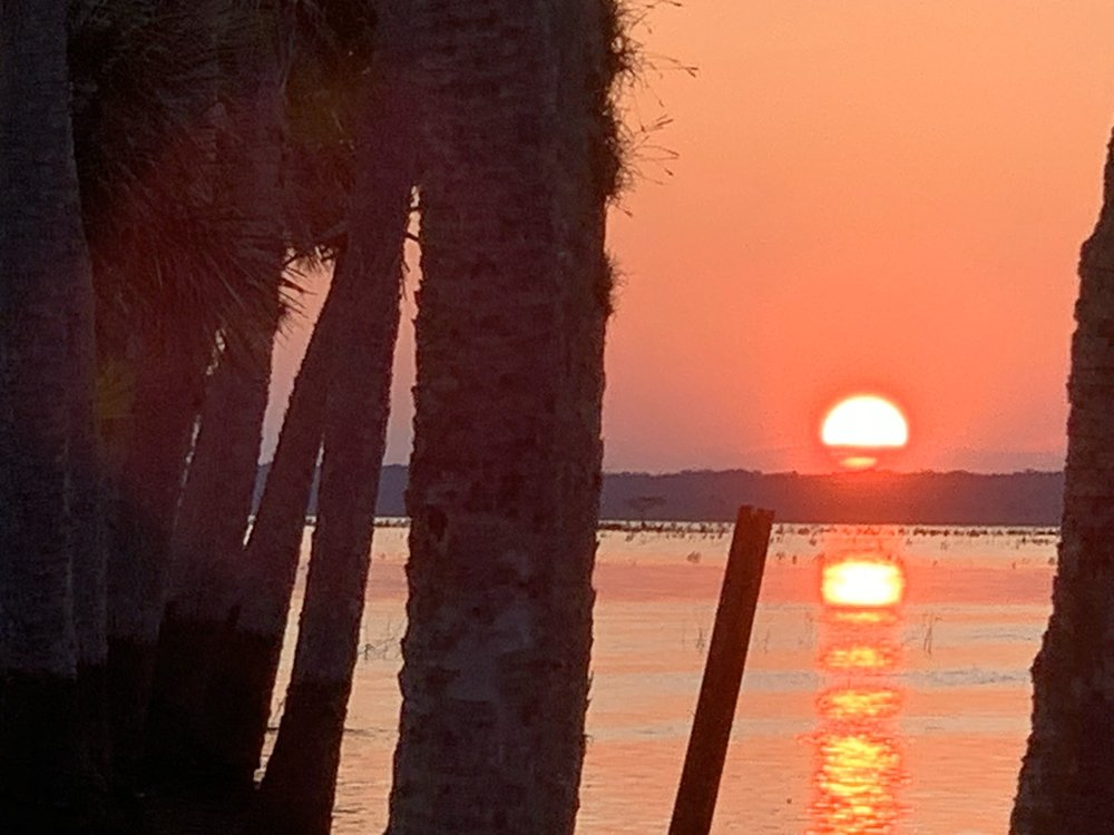 A St Johns River Airboat Tour: Christmas, FL