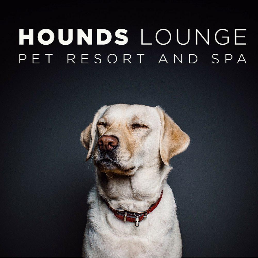 Hounds Lounge Pet Resort and Spa: 1711 Rebsamen Park Rd, Little Rock, AR