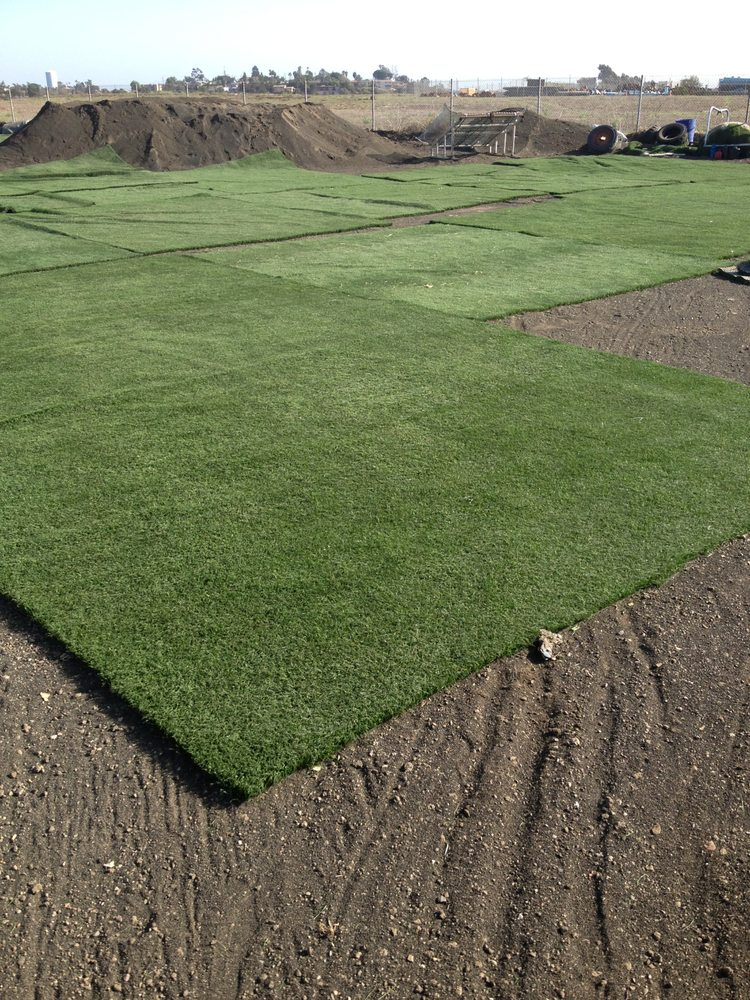 Recycled Artificial Grass San Diego Used Artificial Turf