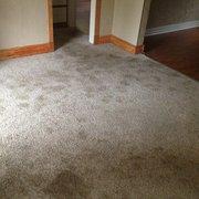 A Team Carpet Clean 14 Photos Carpet Cleaning 1808 Sw