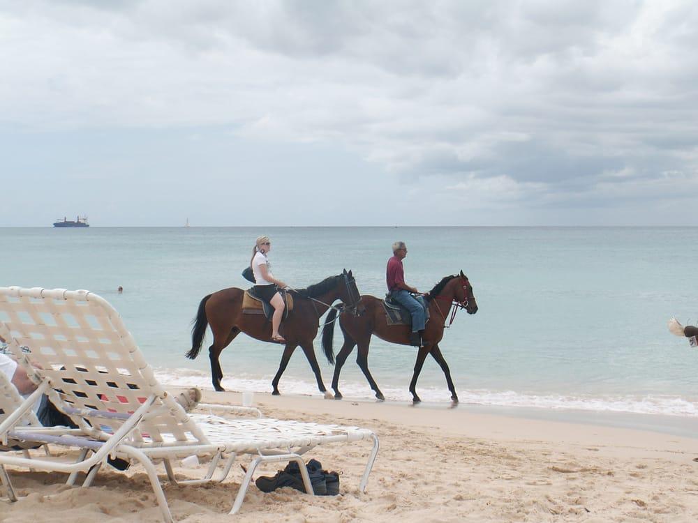 Cruise N Play Travel: Merritt Island, FL
