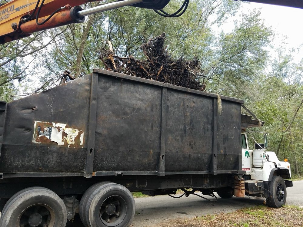 S & S Tree & Field Services: 11400 SW 162nd Ave, Brooker, FL