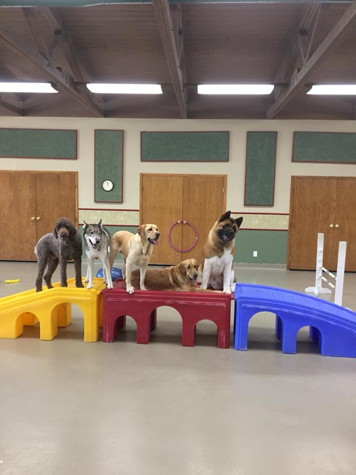 Golrusk Pet Care Center: 1991 Allouez Ave, Green Bay, WI