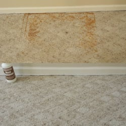 Pristine tile carpet cleaning 17 photos carpet cleaning 1412 charles st fredericksburg - Often clean carpets keep best state ...