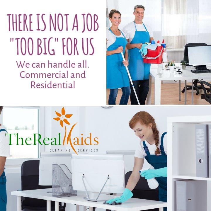 The Real Maids: Apollo Beach, FL