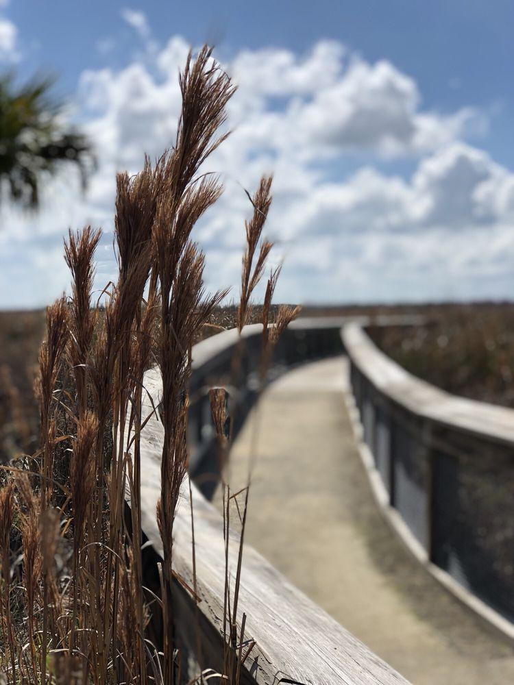 Sweetwater Wetlands Park: 325 SW Williston Rd, Gainesville, FL