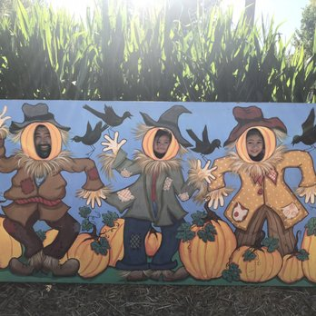 Photo of Live Oak Canyon Pumpkin Patch and Christmas Tree Farm - Redlands,  CA, - Live Oak Canyon Pumpkin Patch And Christmas Tree Farm - 576 Photos