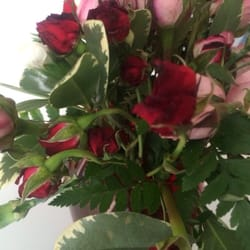 Flowers Just For You , 28 Photos , Florists , 23045 Ryan Rd