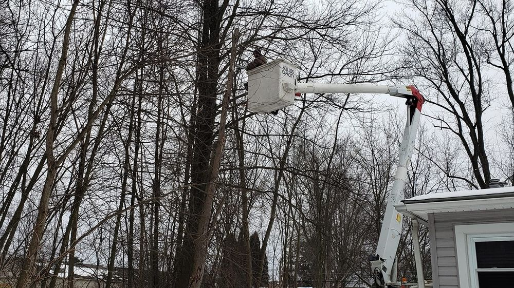 G's Tree Service: 3966 S Canal St, Newton Falls, OH